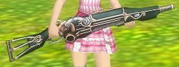 39_磐石の銃.JPG