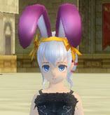 紫ペアの頭飾り.jpg