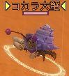 コカラ大蟹.jpg