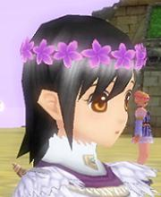 花紫40.JPG