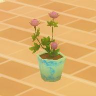 綺麗な花の鉢.jpg