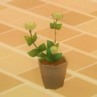 花の鉢.jpg