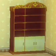 華麗な本棚.jpg
